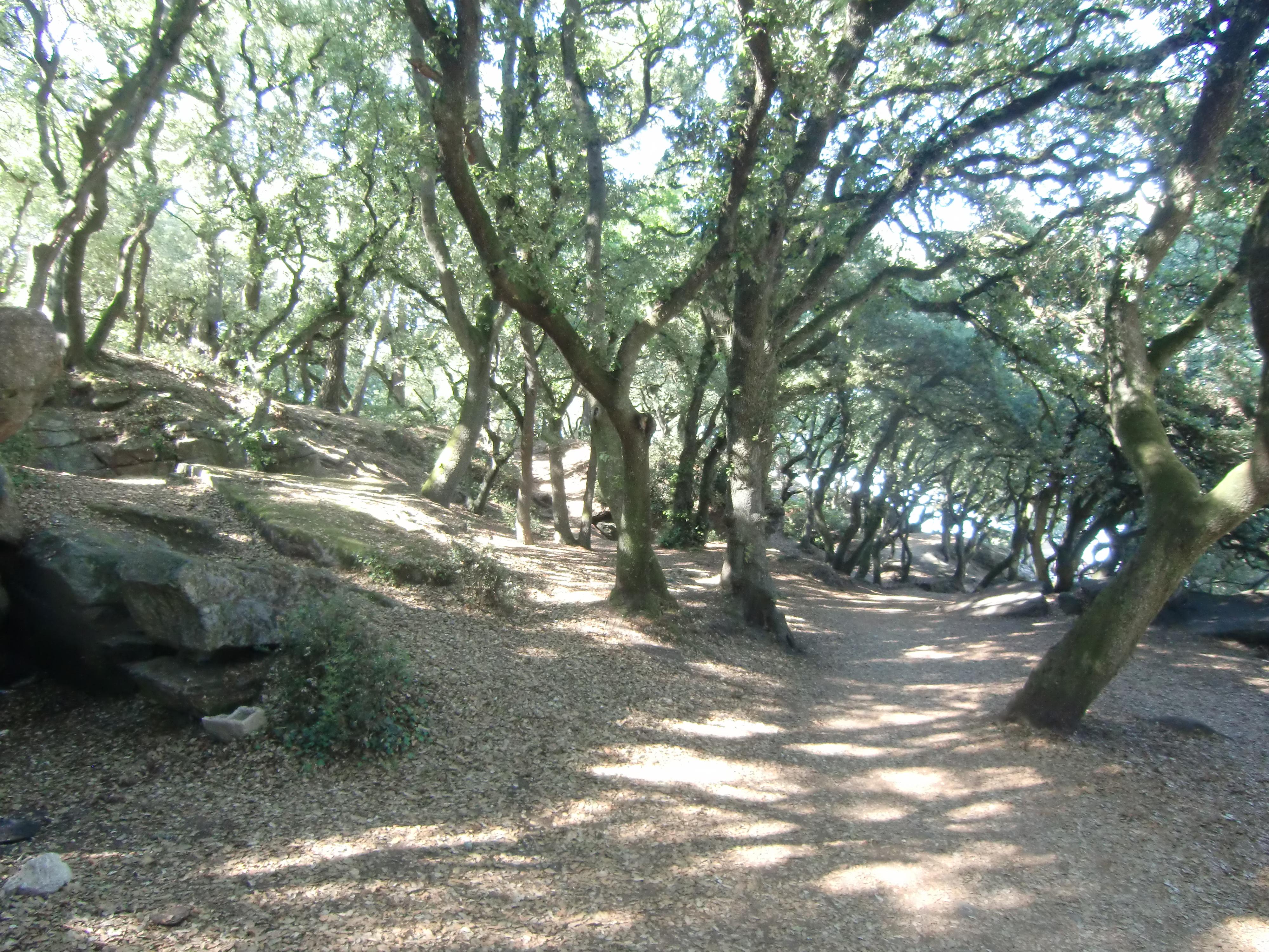 Visite Du Cot Bois De La Chaise Avec Google Maps Street View En Cliquant Sur Le Lien Ci Dessous